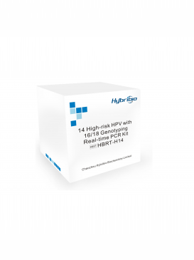 Kit chuẩn đoán HPV - 14 High-risk HPV with 16 / 18 Genotyping Real-time PCR Kit